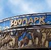 Зоопарки в Крутихе